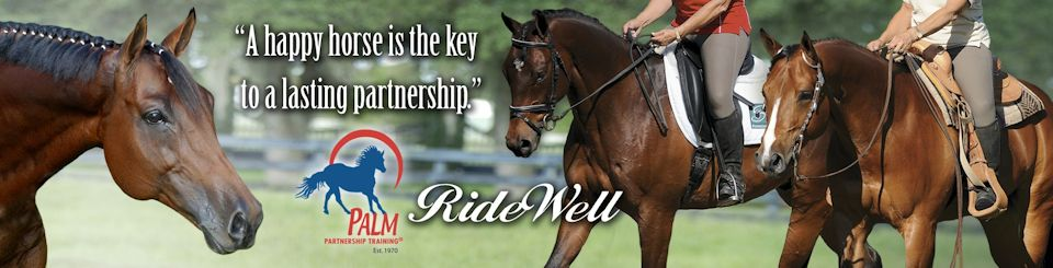 Lynn Palm | Western Dressage Competition
